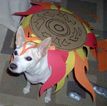 okami-cosdog